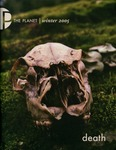 The Planet, 2005, Winter