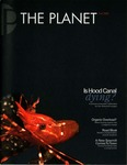 The Planet, 2006, Fall