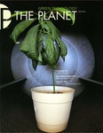 The Planet, 2009, Winter