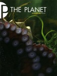 The Planet, 2013, Fall