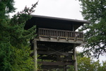 Sehome Hill Arboretum Observation Tower by Lev Shuster